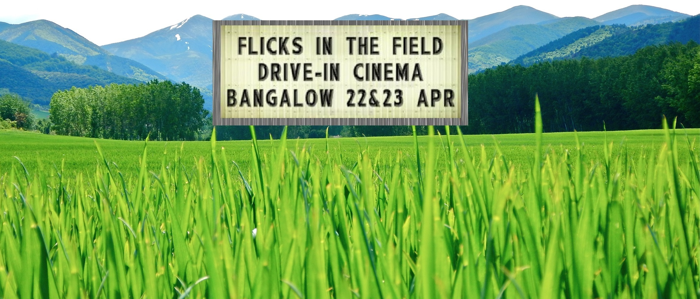 Outdoor & Drive-In Cinema